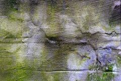 Oude concrete veelkleurige muur, royalty-vrije stock foto