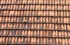 Oude daktegel Stock Afbeelding