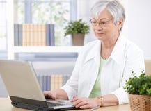 Oude dame die laptop met behulp van Stock Afbeeldingen