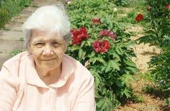 Oude dame in pioen Stock Foto's