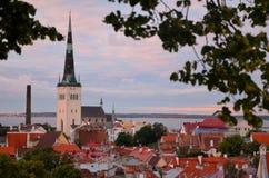 Oude de Stadsdaken van Tallinn Estland bij zonsondergang Stock Foto
