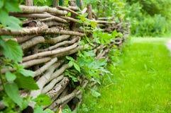 Oude decoratieve omheining van boomtakken kweek groen gras royalty-vrije stock foto