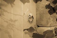 Oude deur met een handvat Stock Foto's