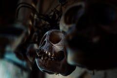 Oude die aapschedels als amuletten tegen de geesten van ju worden gebruikt te beschermen stock foto's