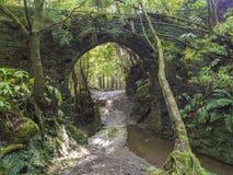 Oude die steen doen water-buis de brug door mos wordt behandeld en de weelderige vegetatie op voetpad wandelingssleep Janela vuur stock foto