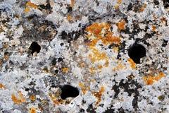 Oude die steen, rotsen met oranje korstmos worden behandeld stock fotografie