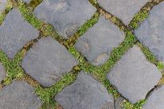 Oude donkere de vloertegel van de granietsteen als achtergrond in Rome, Ita Stock Fotografie