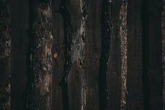 Oude donkere houten Muur Royalty-vrije Stock Foto