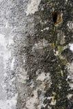 Oude doorstane granietmuur Stock Fotografie
