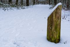 Oude doorstane houten die pool in sneeuw, het bos tijdens wintertijd wordt behandeld stock afbeeldingen