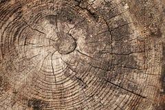 Oude doorstane houten sectieachtergrond Royalty-vrije Stock Foto's