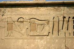 Oude Egyptische muur Stock Foto