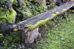 Oude en rotte houten bank royalty-vrije stock afbeeldingen