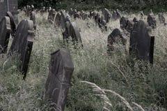 Oude ernstige stenen in overwoekerde begraafplaats royalty-vrije stock afbeeldingen