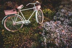 Oude fiets in de tuin met bloemendoos royalty-vrije stock afbeeldingen