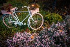 Oude fiets in de tuin met bloemendoos royalty-vrije stock afbeelding