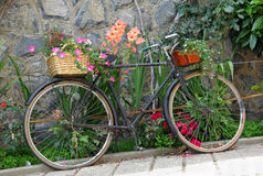 Oude fiets die met bloemen wordt verfraaid royalty-vrije stock foto