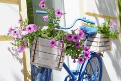 Oude fiets met bloemendoos Stock Fotografie