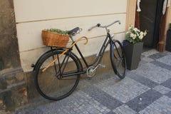 Oude fiets met rieten mand Royalty-vrije Stock Afbeelding