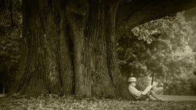 Oude filmeffect lengte: een jongen zit onder de reusachtige boom en leest een boek stock videobeelden