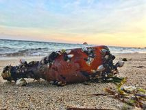 Oude fles op het strand stock fotografie