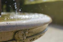 Oude fontein met het leeuwhoofd De hete Dag van de Zomer Het bespatten van het water royalty-vrije stock fotografie