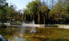 Oude fontein met zwanen Stock Afbeelding