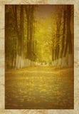 Oude foto van de herfstpark Stock Afbeeldingen