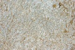 Oude gebarsten concrete textuur Royalty-vrije Stock Afbeelding