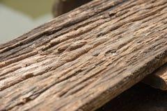 Oude gebarsten houten korreltextuur Stock Foto's