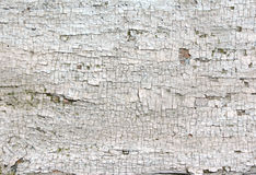 Oude gebarsten verfclose-up Stock Foto