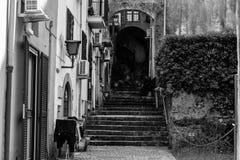 Oude gebouwen in zwart-wit Royalty-vrije Stock Foto's