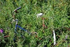 Oude gebroken roestige fiets in gras stock fotografie