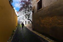 Oude gekleurde straten en het gewone leven van de stad van Lissabon portugal royalty-vrije stock foto's