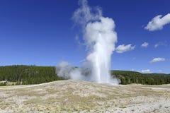 Oude Gelovige Geiser, het Nationale Park van Yellowstone, Wyoming Stock Afbeeldingen