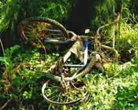 Oude geroeste die fiets in struiken wordt gedumpt Stock Afbeelding