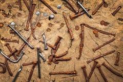 Oude geroeste en nieuwe spijkers in een boomstam Royalty-vrije Stock Fotografie