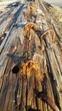 Oude geroeste ijzeraren in zeer brok van hout op het strand stock afbeelding