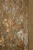 Oude geschilderde houten textuur Stock Afbeelding