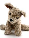 Oude Gevulde Hond Royalty-vrije Stock Foto