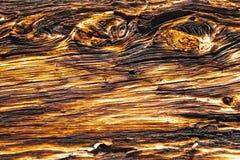 Oude geweven houten plank met knotholes stock afbeelding