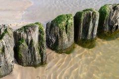 Oude golfbrekermeerpalen op het overzeese strand Kust in centrale europ royalty-vrije stock foto's
