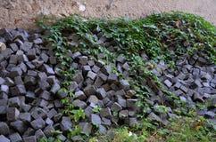 Oude graniethoop met groene vagetation Royalty-vrije Stock Fotografie