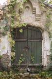 Oude groene deur in het de herfstpark, Konig-Paleis, de Oekraïne Stock Foto's