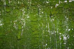 Oude groene gebarsten verf op witte muur Royalty-vrije Stock Foto