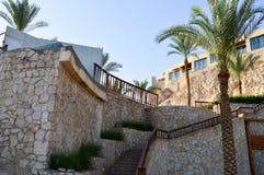 oude grote trap en mooie tropische palmen met groene takken tegen de achtergrond van vensters en steile zandige cli royalty-vrije stock afbeeldingen