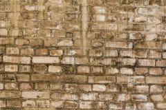 Oude grungy textuur, grijze bakstenen muur Stock Foto's