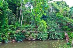 Oude hangbrug over de rivier Stock Fotografie