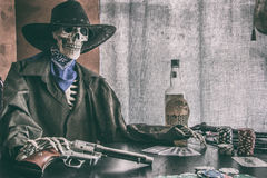 Oude het Skeletwijnoogst van de het Westenpook Stock Fotografie