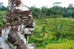Oude Hindoese architectuur en terrassen Bali, Indonesië royalty-vrije stock afbeeldingen